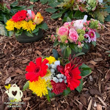a1-a-bloemstukken-kleine-grafstukjes-gerbera