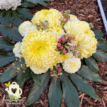 a1-bloemstuk-bolchrysanten