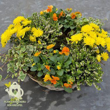 grafdecoratie-gele-chrysant
