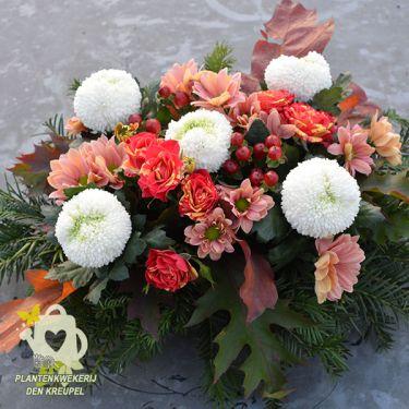 vijf-kleine-witte-chrysanten
